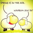 Spring is in the air !! Hihi !
